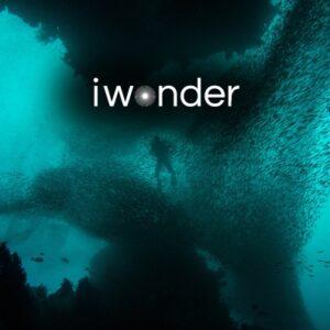 iwonder-undersea